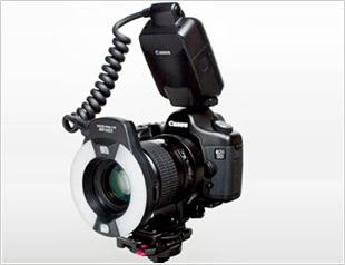 一眼レフデジカメ(Canon EOS Kiss+マクロレンズ+リングストロボ)
